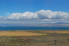青海湖  Qinghai Lake !