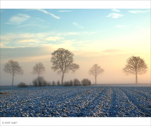 Peaceful Winter Morning by *sido*.