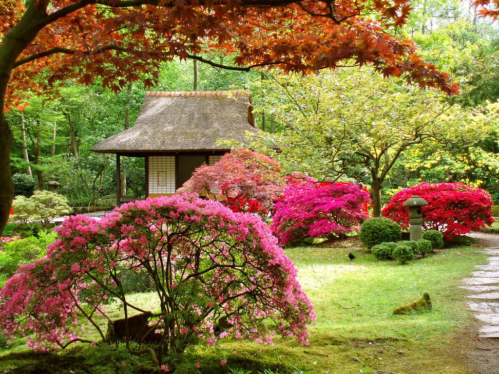 35 Amazingly Beautiful Japanese Gardens