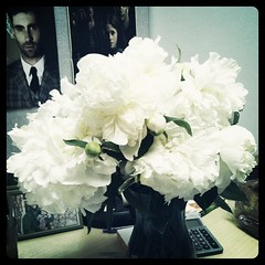 My coworker brought me a ton of Peonies from her garden!