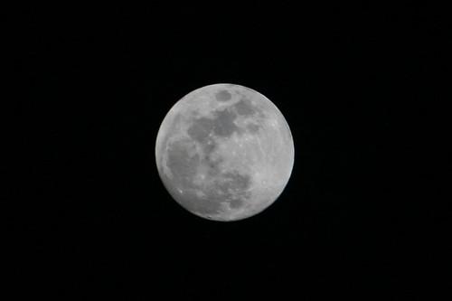 정월 대보름 달