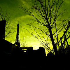 Green Paris (janbat) Tags: paris green d50 nikon vert muse tokina f4 1224 quaibranly platinumphoto janbat jbaudebert