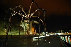 spider (Francesco [francepics]) Tags: night lights spider nikon bilbao guggenheim luci tamron colori notte spagna ragno emozioni 17mm paesibaschi abigfave platinumphoto aplusphoto d40x theperfectphotographer