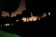 (wane-) Tags: light sky skyline night fluids girovagando spiritsinthenight summerromance mindtravelling silhouettesagainstthesun