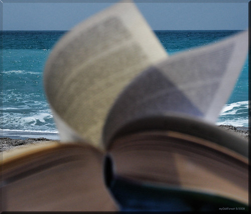 sun, beach and a good book