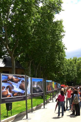 Feria libro 2008-27