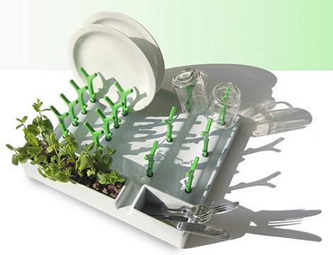 Dry-Dishes-and-Grow-Herbs-with-Dish-Drainer