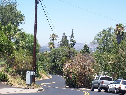 Acacia view 2