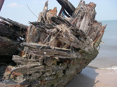 IMGP0283 (paulsyak) Tags: kayak lewes delawarebay beachplumislandshipwreck