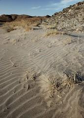 Arena (montuno) Tags: sea naturaleza nature atardecer evening mar andalucía sand nikon mediterraneo playa arena julio dslr 2008 almería cabodegata ufraw parquenatural nijar playadelamedialuna parquenaturaldelcabodegatanijar