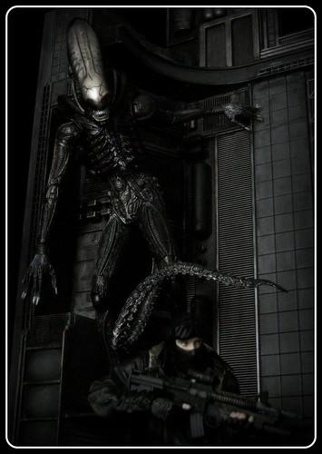 McFarlane Military vs NECA Alien II
