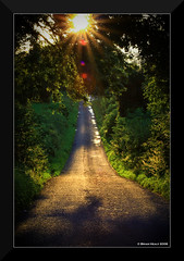 Country Road (BrianHealyPhoto) Tags: road ireland light sunset irish landscape country rays