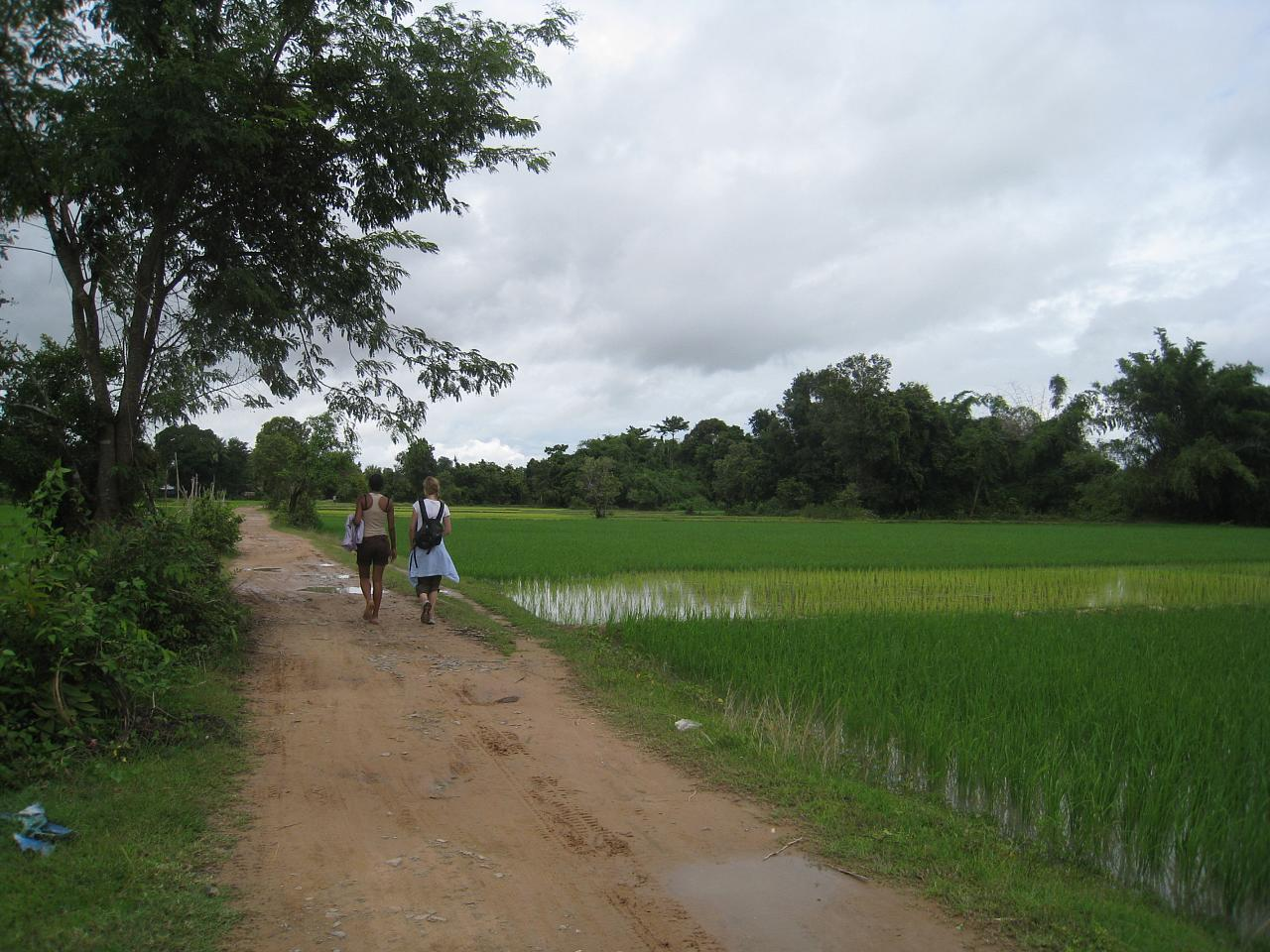 Walking amongst the rice paddies of Don Det.