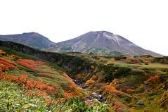 ピウケナイ沢越しに旭岳と熊ヶ岳を望む