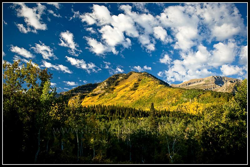beautiful fall scenic view - photo #30