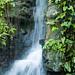 Botanical Gardens and Zoo 047