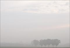 Minimalismus (gek-ko) Tags: trees fog germany bayern bavaria nebel bume gekko minimalismus kfering eliteimages agcg mygearandme mygearandmepremium artistoftheyearlevel4 artistoftheyearlevel5 artistoftheyearlevel7 artistoftheyearlevel6