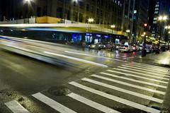 Don't Cross Just Yet (Señor Codo) Tags: longexposure chicago downtown cta nighttime rushhour crosswalk chicagotransitauthority ctabus codophoto
