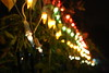 Simple, and some not so simple joys of life (G's memories) Tags: lights diwali 2008 deepawali divali dewali depawali diwaliathomeafteralongtime pollutionchocksmethough ilovebeinghomeondiwali diwaliisindiaschristmas orinfactchristmasisworldsdiwali