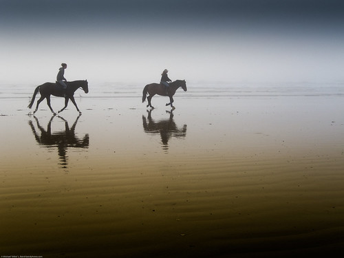 Two equestrian riders, girls on horseback, in low tide reflections.  Serene