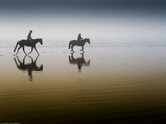 Two equestrian riders, girls on horseback, in low tide reflections on serene Morro Strand State Beach (mikebaird) Tags: girls horses strand reflections women couple postcard pair foggy explore riding creativeco