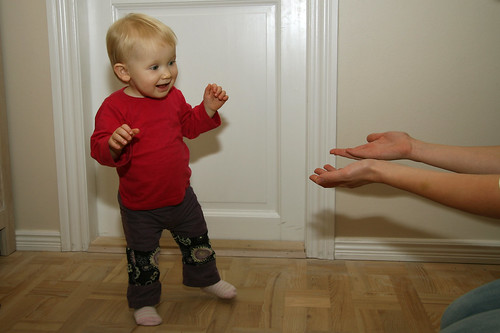 First tottering step (well, almost)