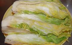 08-11白菜5
