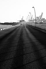 Porta Coeli (Annamon) Tags: barcelona sea blackandwhite bw byn bar restaurant mar carretera restaurante sigma catalonia bn catalunya asfalto gaviota portacoeli foveon gruas gavina rompeolas sigma1850f28ex portdebarcelona puertodebarcelona sd14 foveonx3