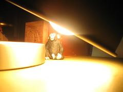 the allmighty lamp (Maʝicdölphin) Tags: light lamp canon monkey bright powershot a590