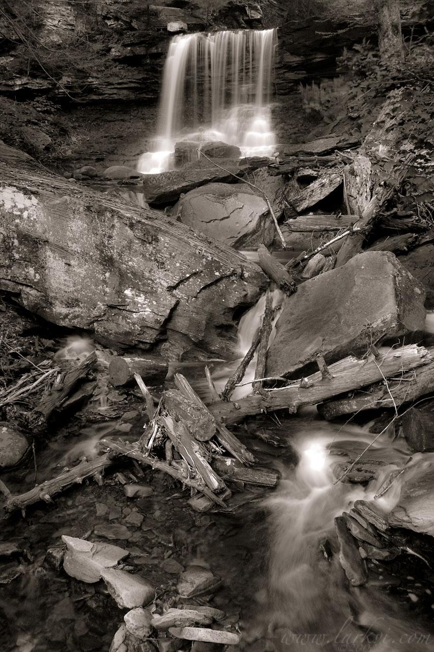 D. Reynolds Falls, Rickett's Glen State Park, Pennsylvania, June 2008