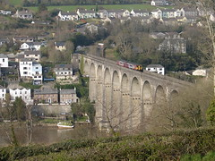 Calstock viaduct and town (rcarpe2) Tags: