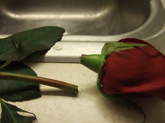 Broken Promises from flickr.com/iampeas
