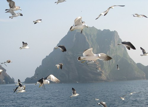 Disillusioned on Dokdo: Part I