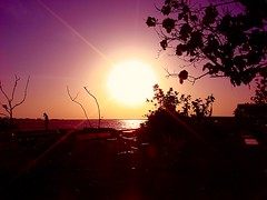 sunrise 1 (Affan_11) Tags: park sea sky people tree male fisherman maldives affan theunforgettablepictures absolutelystunningscapes