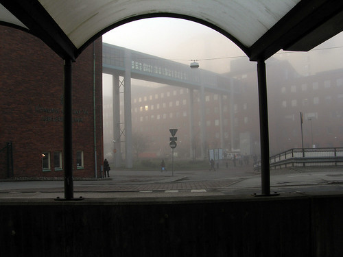 Morning fog - hospital