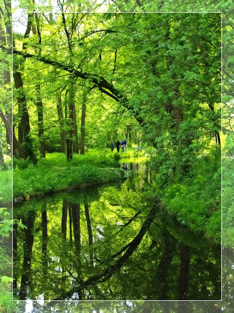 Bois de Boulogne 8