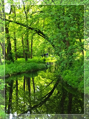 Bois de Boulogne 8 (Megara Liancourt) Tags: green searchthebest boisdeboulogne naturesfinest blueribbonwinner firstquality supershot sonyalpha100 abigfave platinumphoto anawesomeshot aplusphoto superbmasterpiece theunforgettablepictures naturewatcher colourartaward platinumheartaward artlegacy theperfectphotographer goldstaraward absolutelystunningscapes flickrlovers