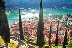 Kotor (yuriye) Tags: montenegro kotor bay town old fjord crna gora црна гора котор черногория yuriye landscape balkans balkan