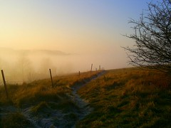 Above the fog 082 (James Trickey) Tags: above cold fog amazing view hill freezing sunny frosty gloucestershire icy brilliant cheltenham wintry leckhampton