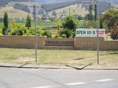 PC170026 (Blake the Black) Tags: apple tasmania tassie huonville