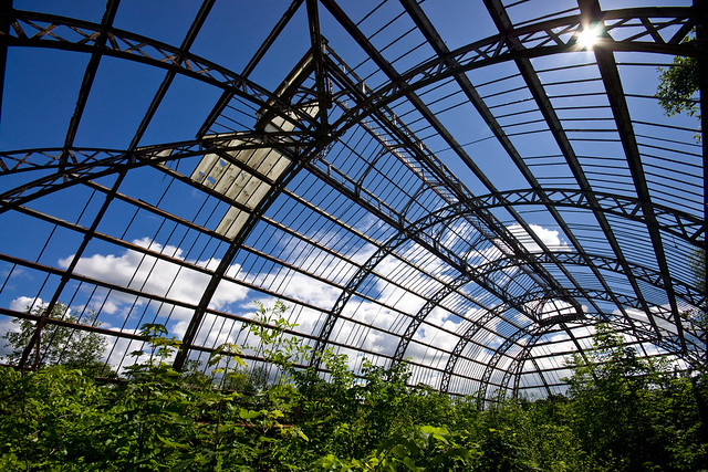 Springburn Winter Gardens (5 of 12) (by Ben Cooper)