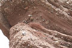 DSC01795 (margaretrowbotham) Tags: nova rocks scotia hopewell