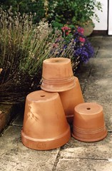 New Clay Flower Pots