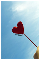 .My.Wish.For.You. (MiracleGirl) Tags: blue red sky macro lens for heart you sigma lil sis wish thanx miraclegirl galb sd14