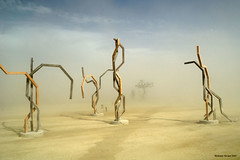 Angular Geometries (naturalturn) Tags: trees usa storm art nevada playa burningman blackrockcity dust duststorm 2007 burningman2007 image:rating=5 image:id=049909 burningman:art=20
