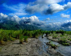 Lahar Country (Storm Crypt) Tags: sky plants cloud mountain mountains green nature water grass clouds creek trekking season landscape flow volcano lava flood outdoor hiking earth philippines hill hills clean soil trail hillside caverns canyons province lahar magma pilipinas luzon pampanga rainyseason naturephotography tarlac zambales ahar wowphilippines centralluzon laharflow mtpinatubotrail stratovocano mountapinatubo