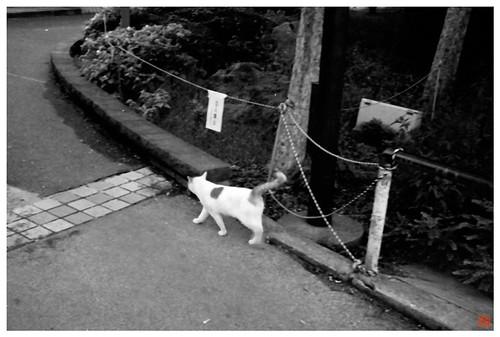 Ueno 081014 #02