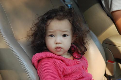 Cutie in a car