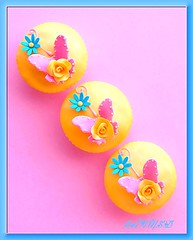 Butterfly n Rose Cupcakes (~Trs Chic Cupcakes by ShamsD~) Tags: pink blue rose yellow by butterfly fun cupcakes nikon pretty candy african south tres chic dotty proudly designercupcakes shamsd shamimadesai madeinsouthafrica cupcakesinsouthafrica cupcakesfromsouthafrica cupcakesinpietermaritzburg weddingcupcakesinsouthafrica weddingcupcakesinpietermaritzburg