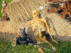 halloween-4 (mlewys) Tags: halloween hauntedisland